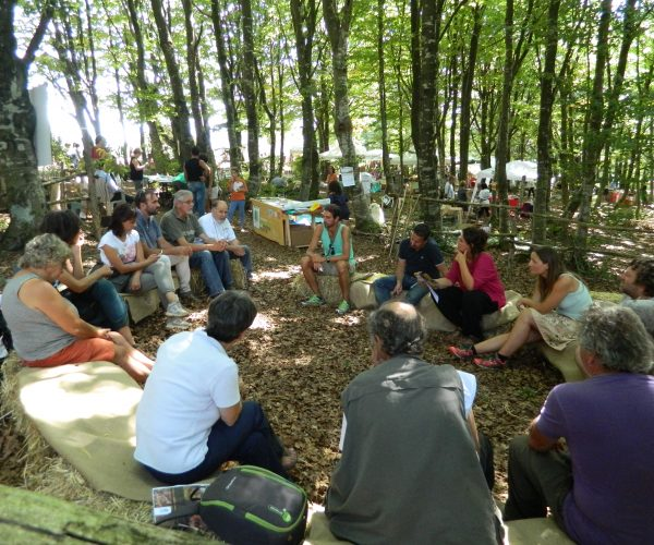 Montagne Fiorentine meetings in woods