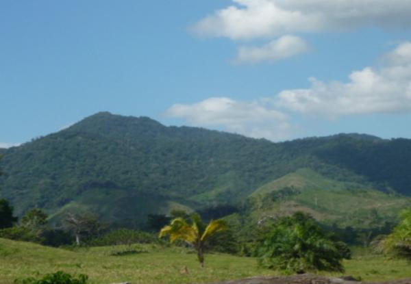 Sico Paulaya 2018-10