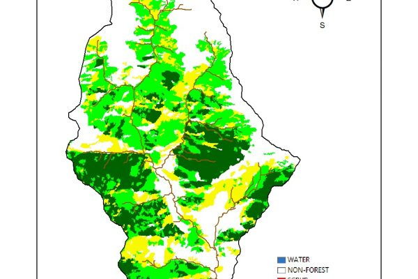 Forest Cover Map_BMF